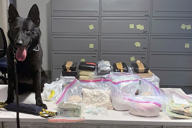photo of westchester county police k-9 and seized drugs and cash